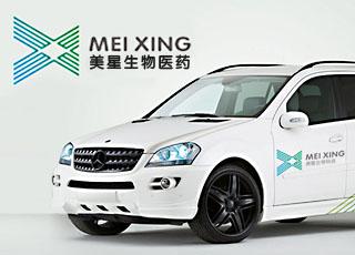 武汉美星生物医药有限公司标志、VI设计